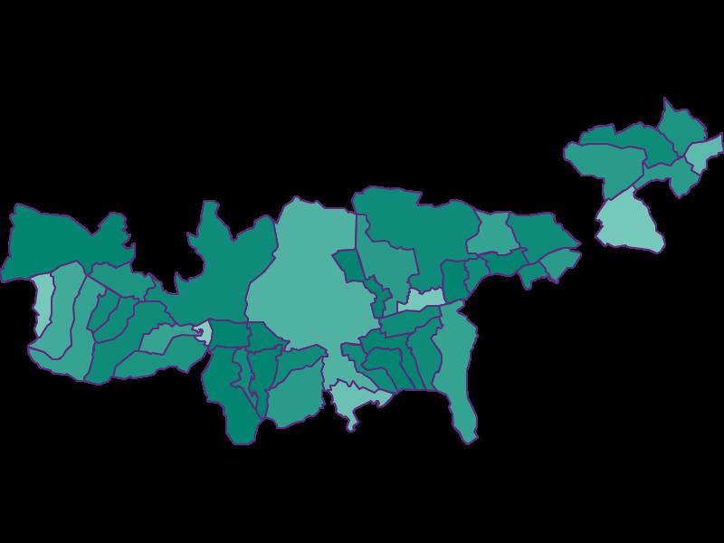 Демография с 1900 года в Mittleres Inntal