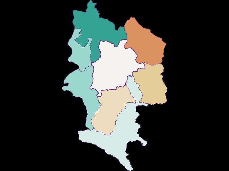 Population development since 1869 in Haag