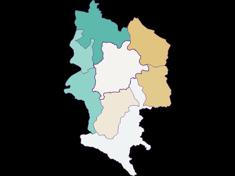Population development since 1900 in Haag
