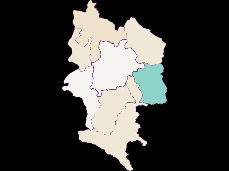 Population development since 2011 in Haag