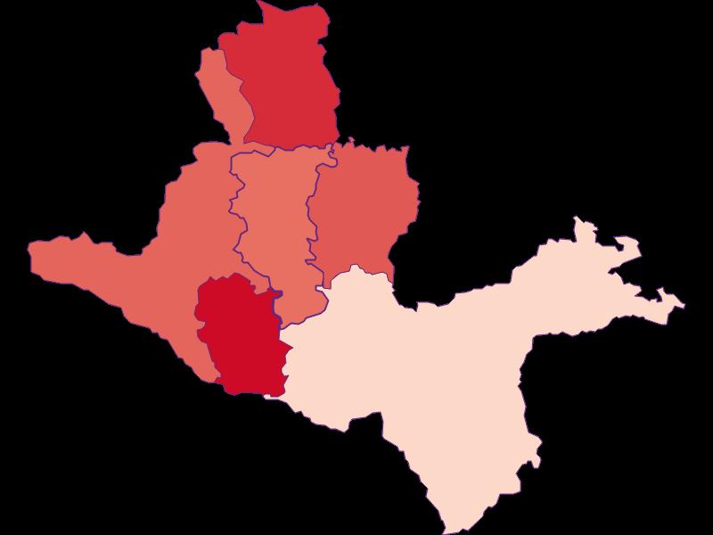 Activity rate in Seitenstetten