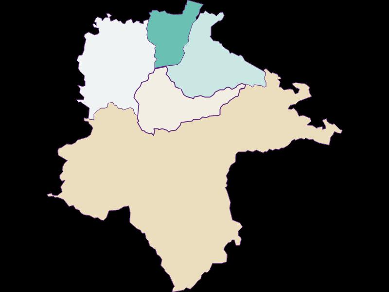 Демография с 1900 года в Sonntagberg
