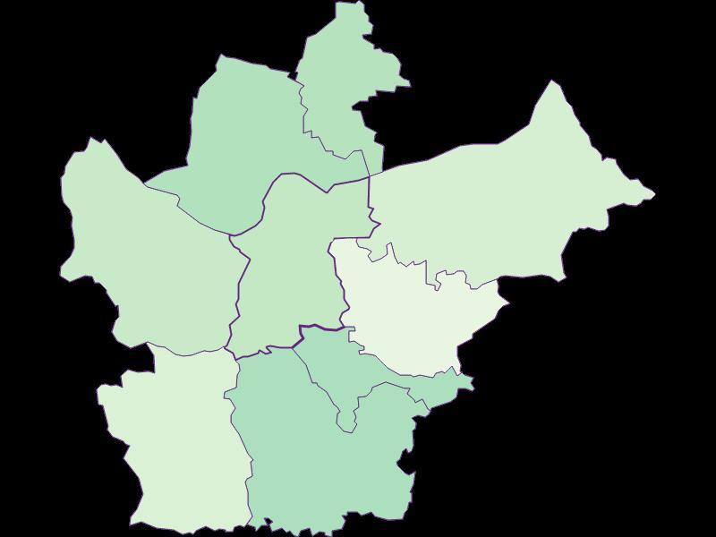 Доля иностранцев в Wallsee-Sindelburg