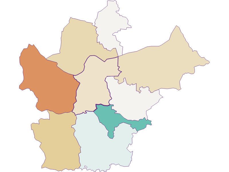 Демография с 1869 года в Wallsee-Sindelburg