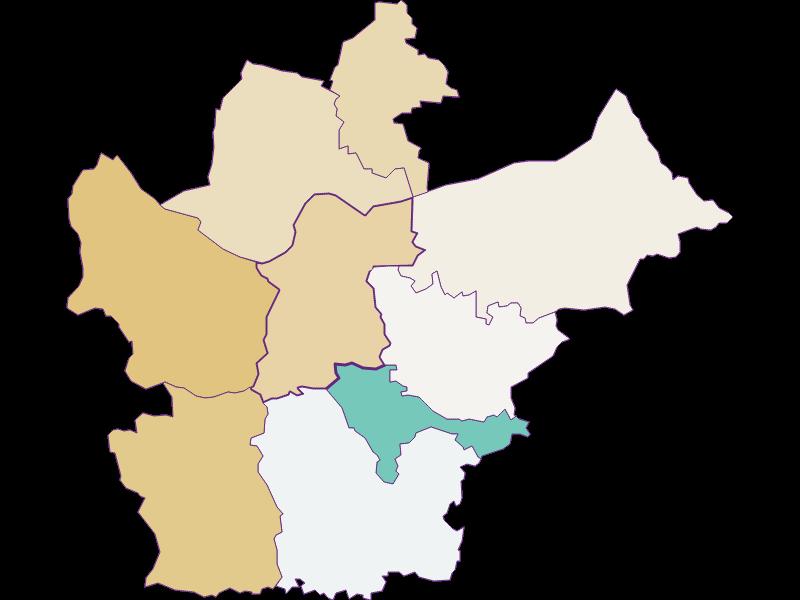 Демография с 1900 года в Wallsee-Sindelburg