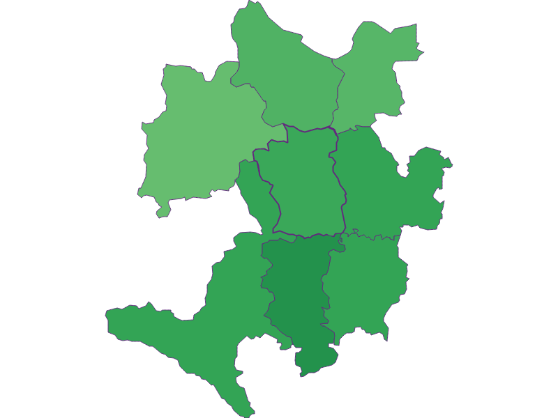 Youth in Wolfsbach