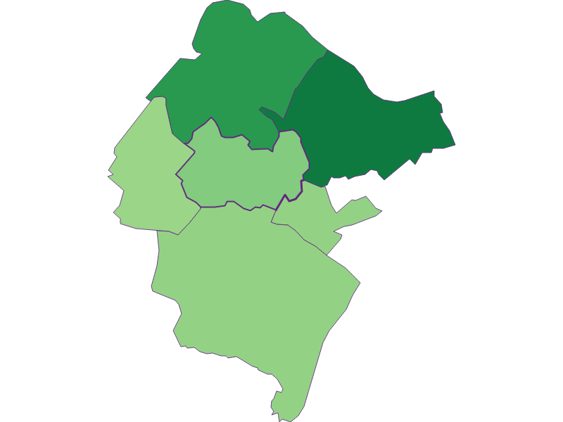 Youth in Hundsheim