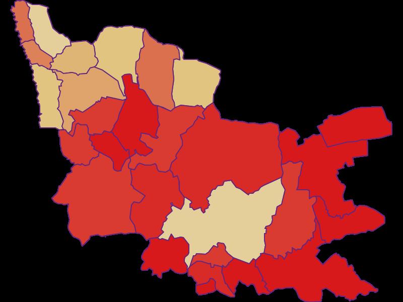 Демография с 1900 года в Güssing