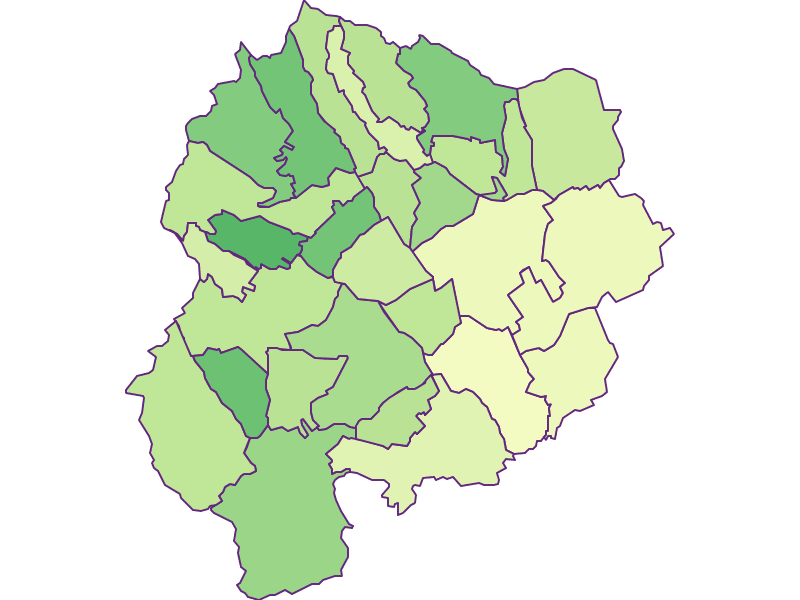 Youth in Oberpullendorf