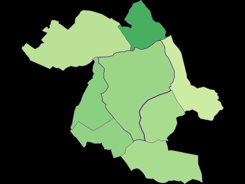 Youth in Eisenstadt