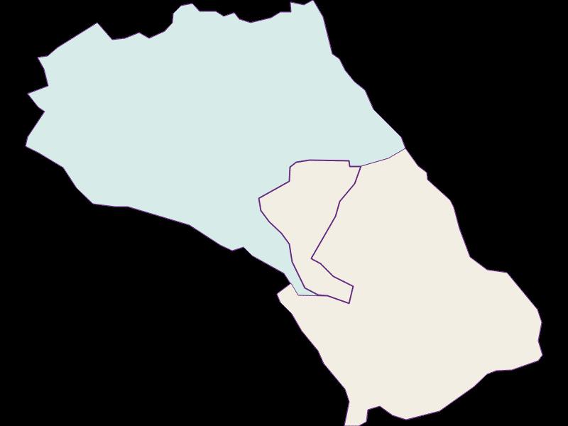 Демография с 1869 года в Loretto
