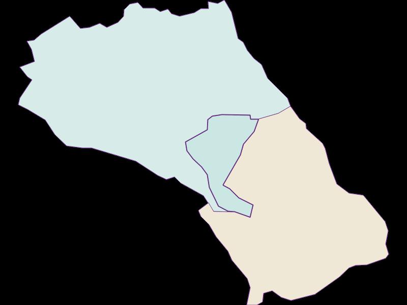 Демография с 1900 года в Loretto