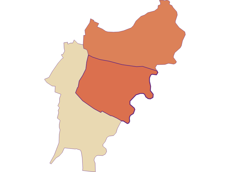 Демография с 1869 года в Jedenspeigen