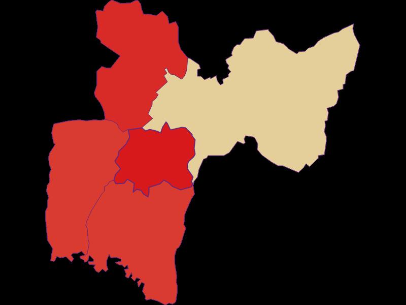 Population development since 1900 in Neustift bei Güssing