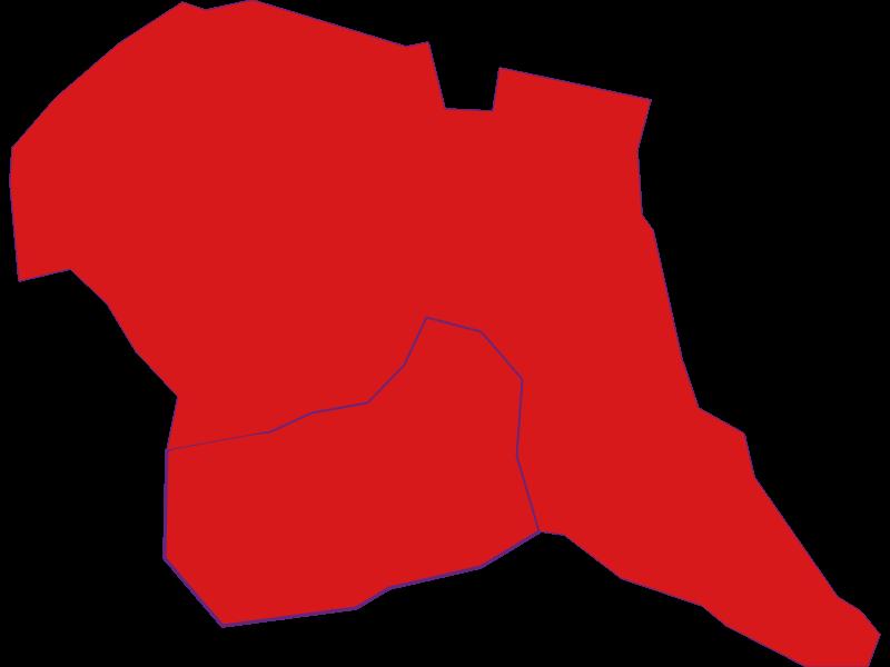 Демография с 1869 года в Tschanigraben