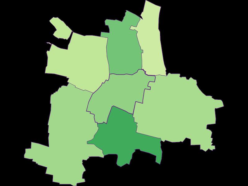 Youth in Guntersdorf