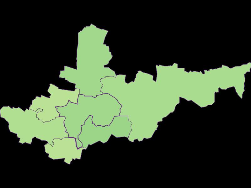 Youth in Ziersdorf