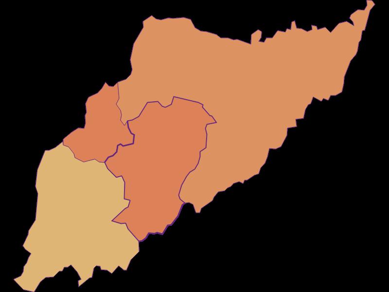 Демография с 2011 года в Minihof-Liebau