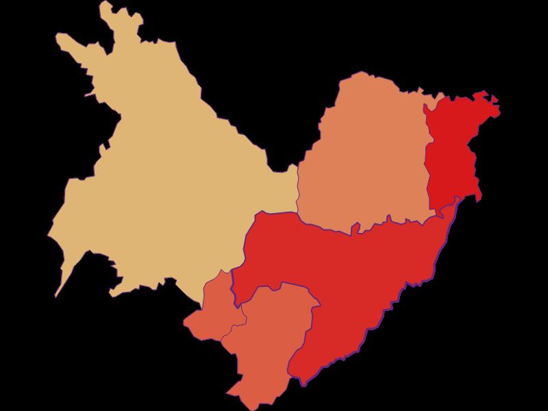 Population development since 1900 in Sankt Martin an der Raab