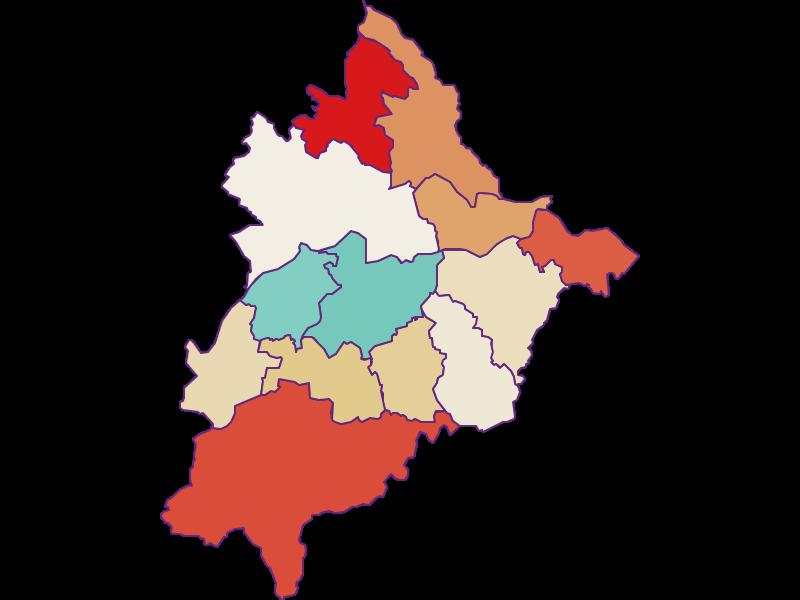 Демография с 1900 года в Völkermarkt