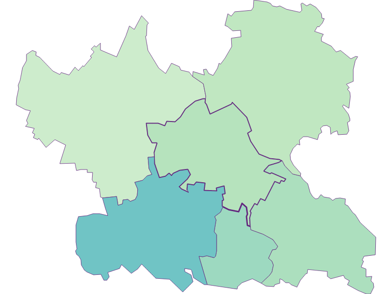 Доля иностранцев в Leitzersdorf