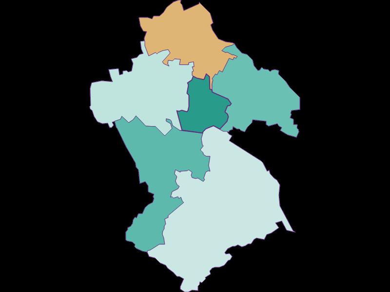 Демография с 1900 года в Spillern