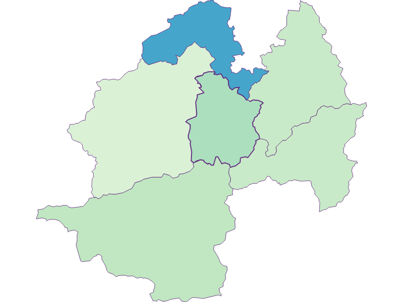 Share of foreigners in Hohenberg