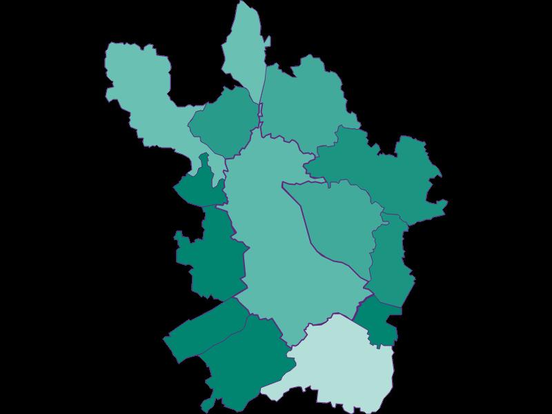 Демография с 1900 года в Linz