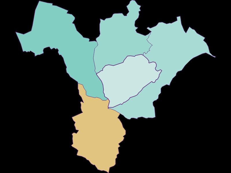 Демография с 1869 года в Forchtenstein