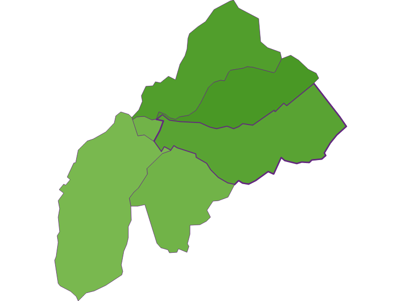 Settlement in Schattendorf