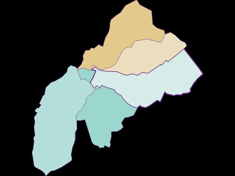 Population development since 1869 in Schattendorf
