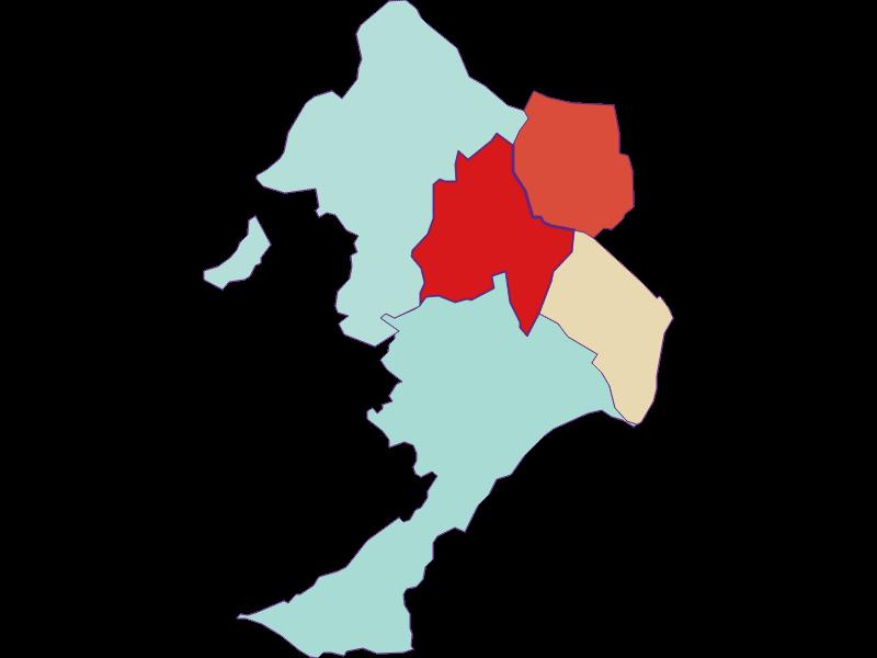 Демография с 1869 года в Sigleß