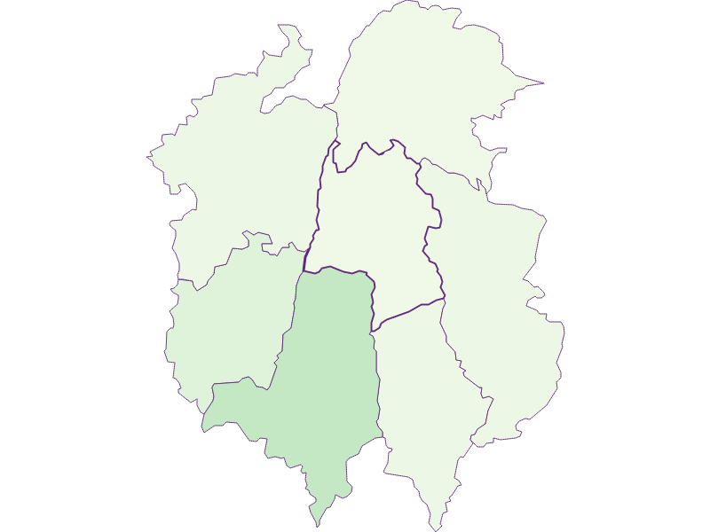 Share of foreigners in Dorfstetten