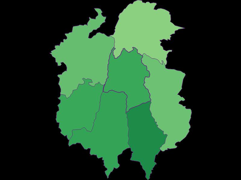 Youth in Dorfstetten