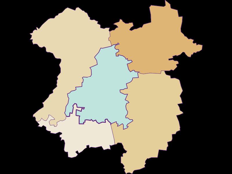 Демография с 1869 года в Mank