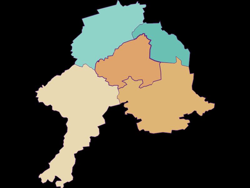 Демография с 1869 года в Schollach