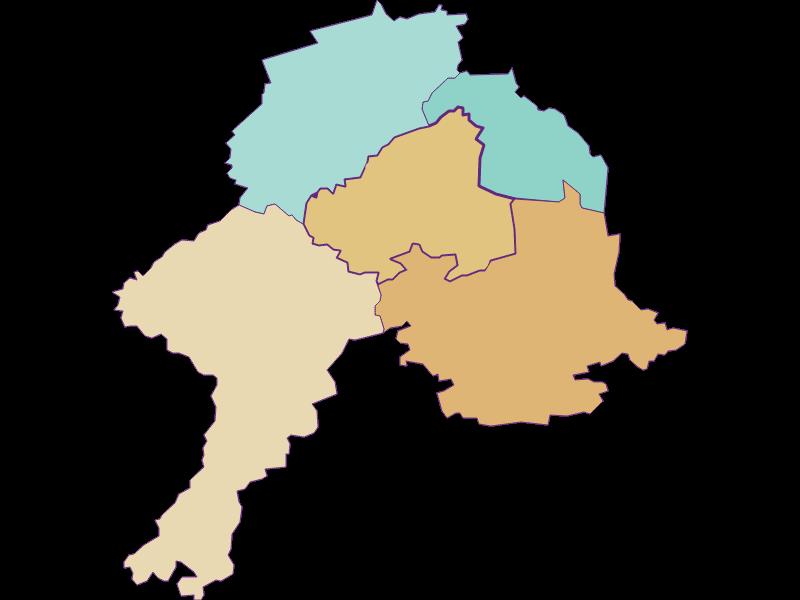 Демография с 1900 года в Schollach