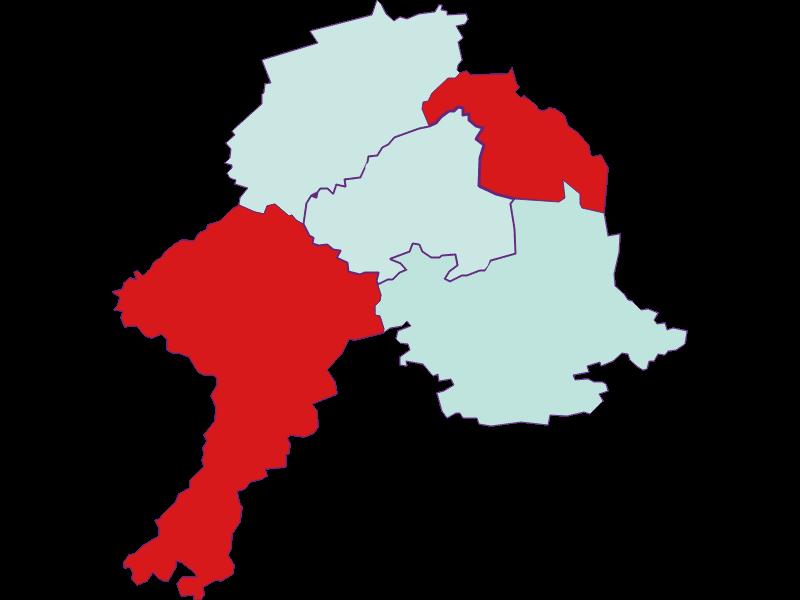 Демография с 2011 года в Schollach