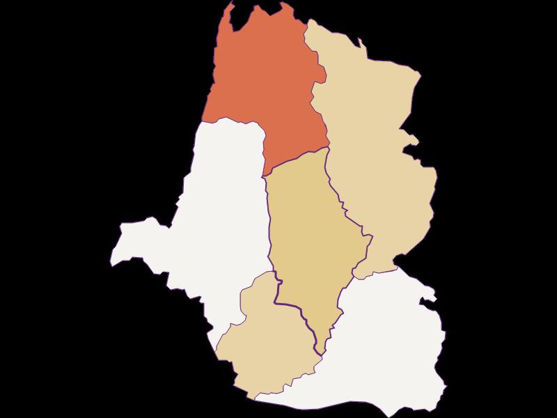 Population development since 1900 in St. Oswald