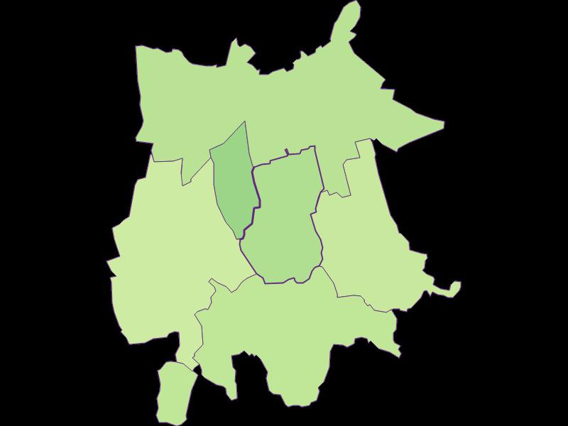 Youth in Gaubitsch