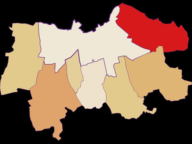 Демография с 2011 года в Laa an der Thaya