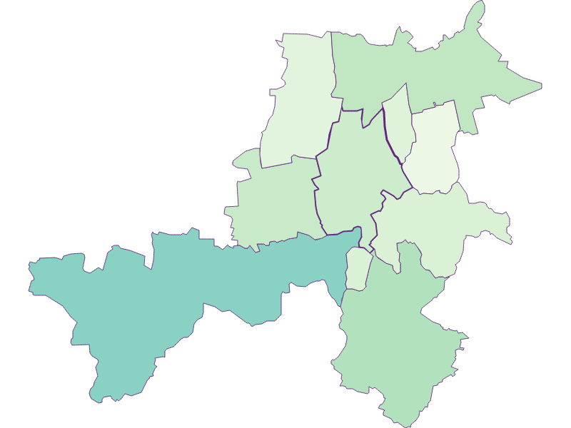 Share of foreigners in Stronsdorf