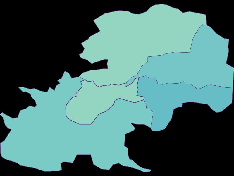 Share of foreigners in Gießhübl