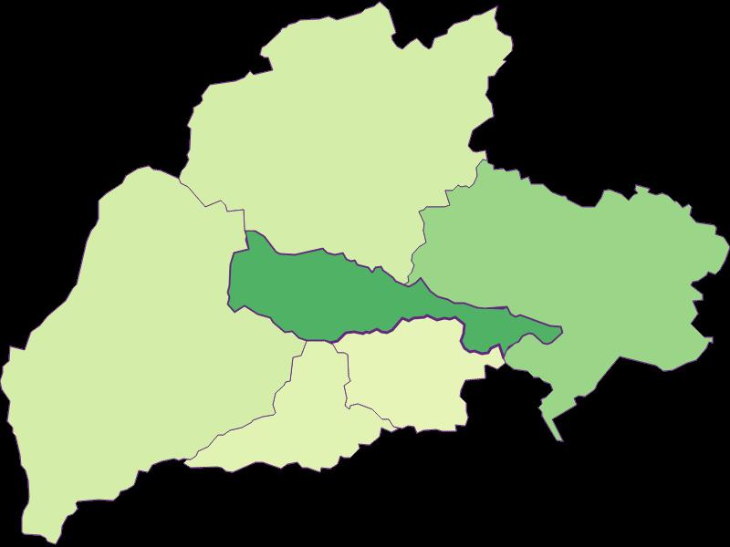 Youth in Bürg-Vöstenhof
