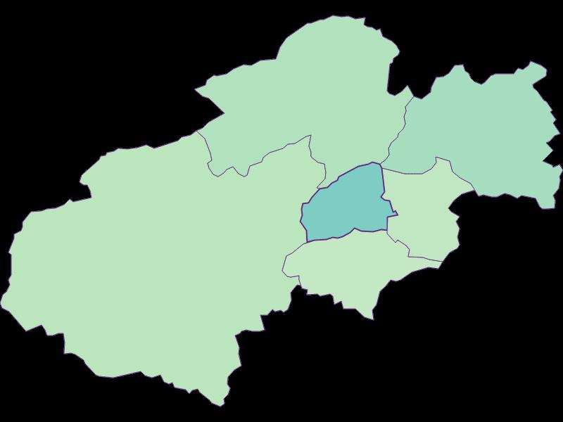 Share of foreigners in Grünbach am Schneeberg