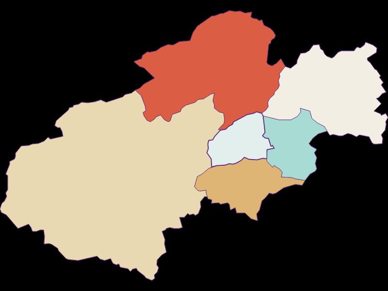 Population development since 1869 in Grünbach am Schneeberg