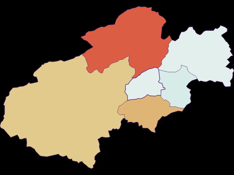 Population development since 1900 in Grünbach am Schneeberg