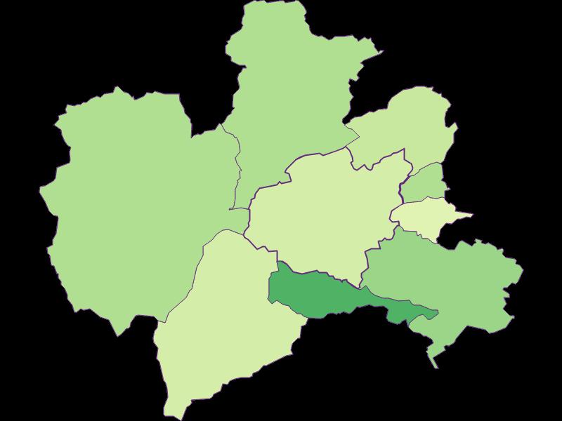 Youth in Puchberg am Schneeberg