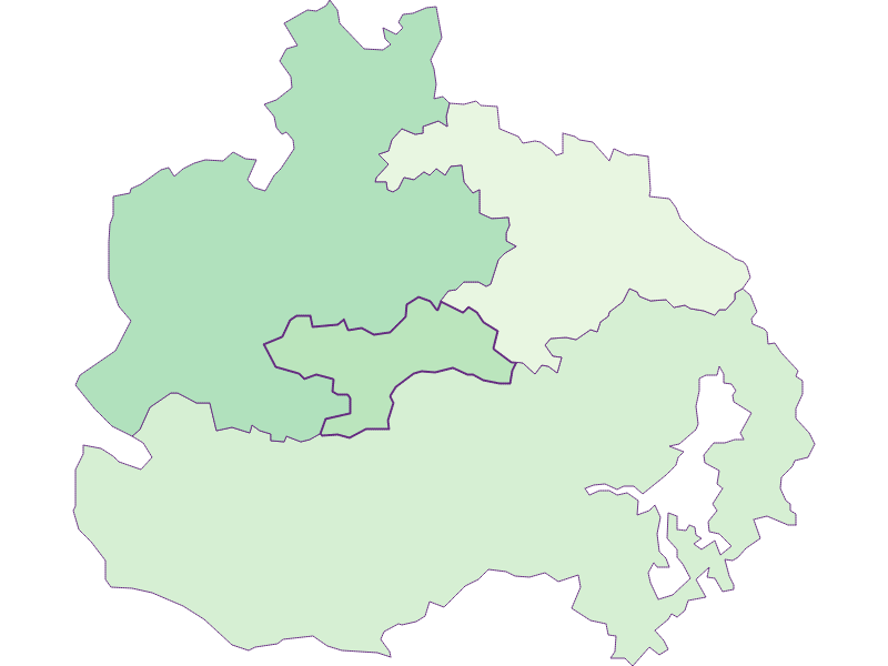 Share of foreigners in St. Corona am Wechsel