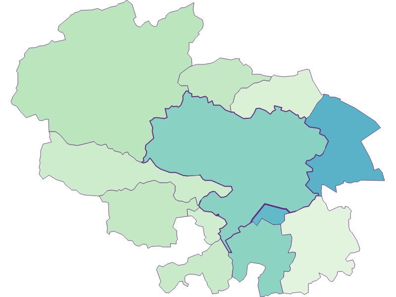 Share of foreigners in Ternitz